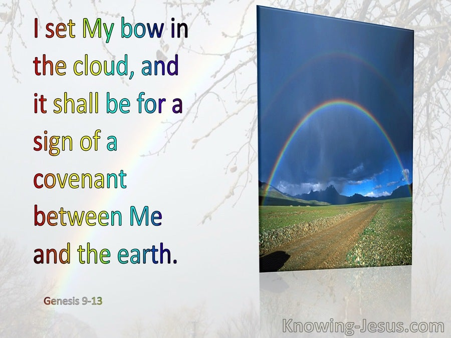 Genesis 9:13 I Do Set My Bow In The Cloud (gray)