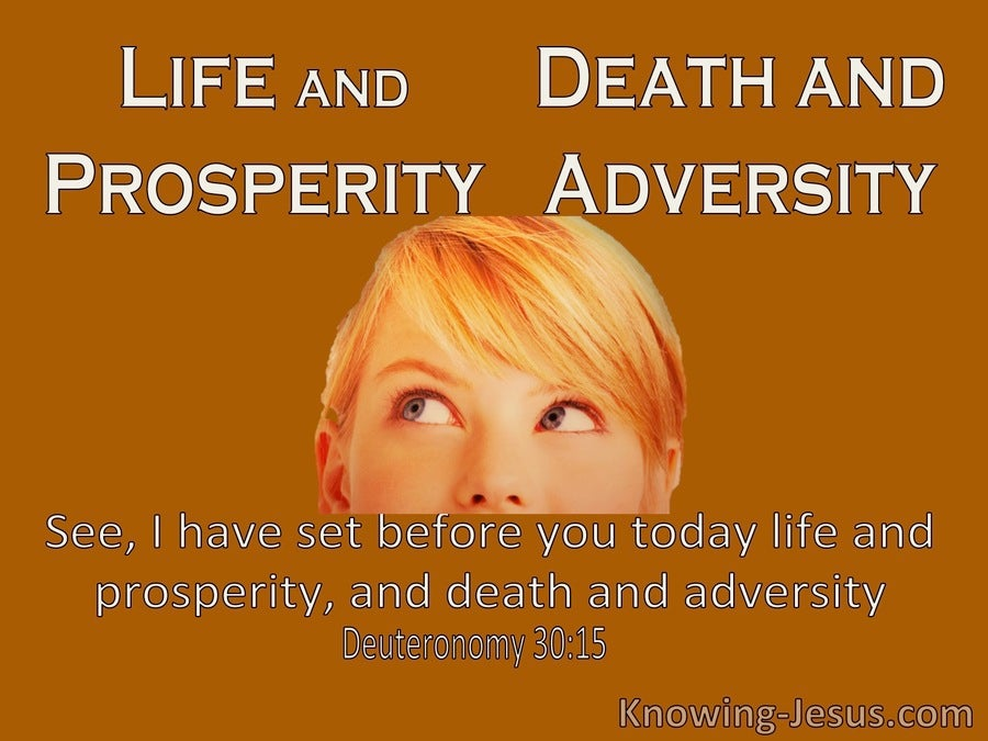 Deuteronomy 30:15 Life And Prosperity Or Death And Adversity (brown)