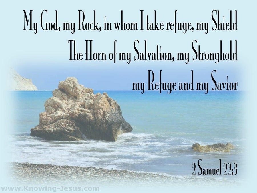 2 Samuel 22:3 My God My Rock In Whom I Take Refuge (aqua)
