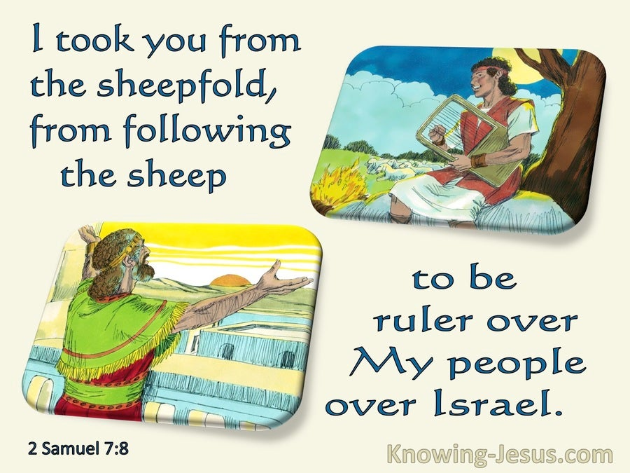 2 Samuel 7:8 The Lord Took You From The Sheepfold To Be My Ruler Over Israel (blue)