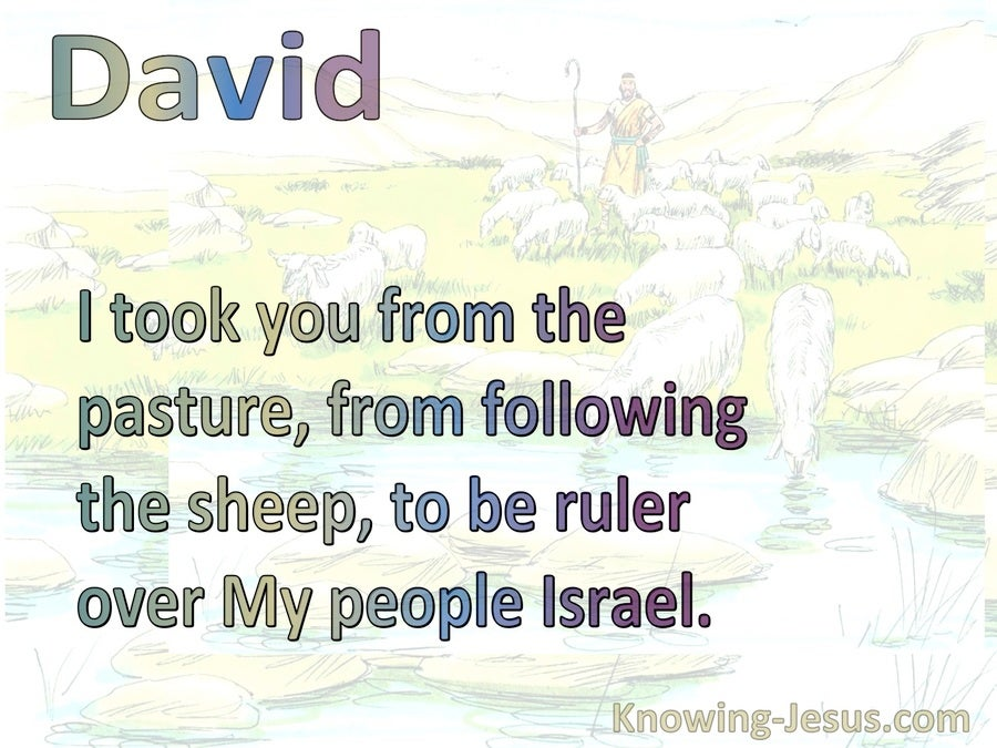 2 Samuel 7:8 Thus You Shall Say To My Servant David (white)