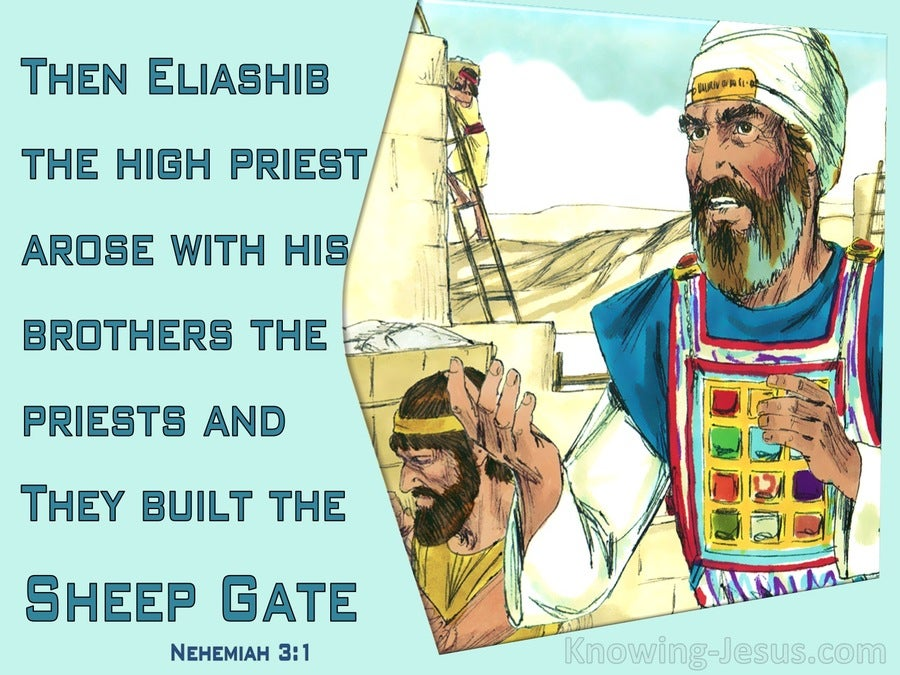 Nehemiah 3:1 Eliashib And The Priests And Built The Sheep Gate (aqua)