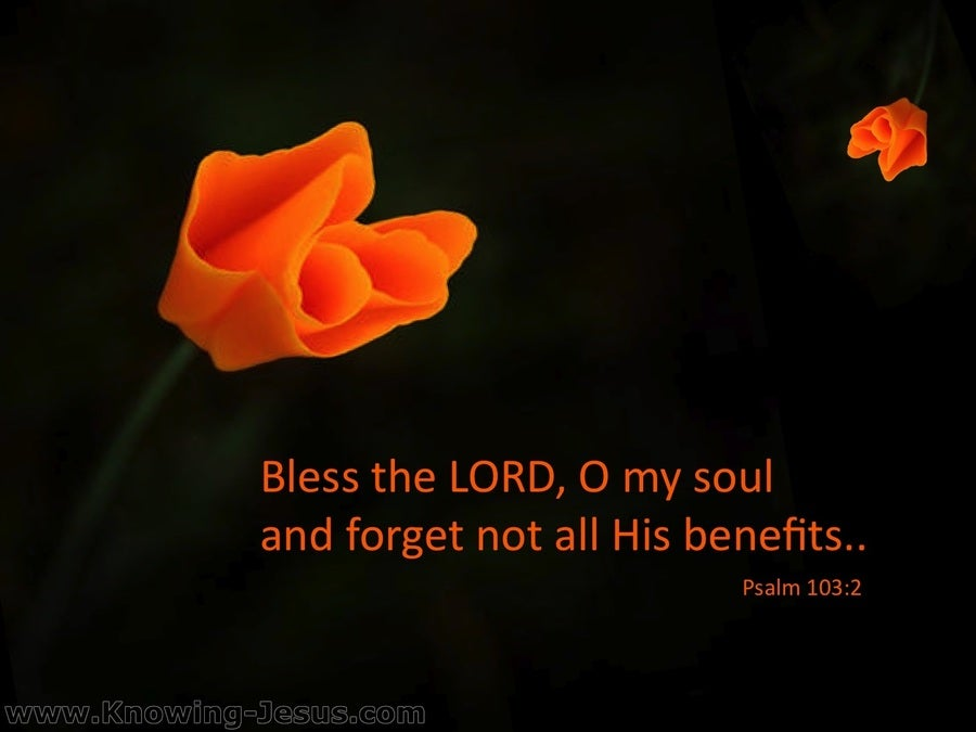 Psalm 103:2 Bless The Lord Oh My Soul (black)