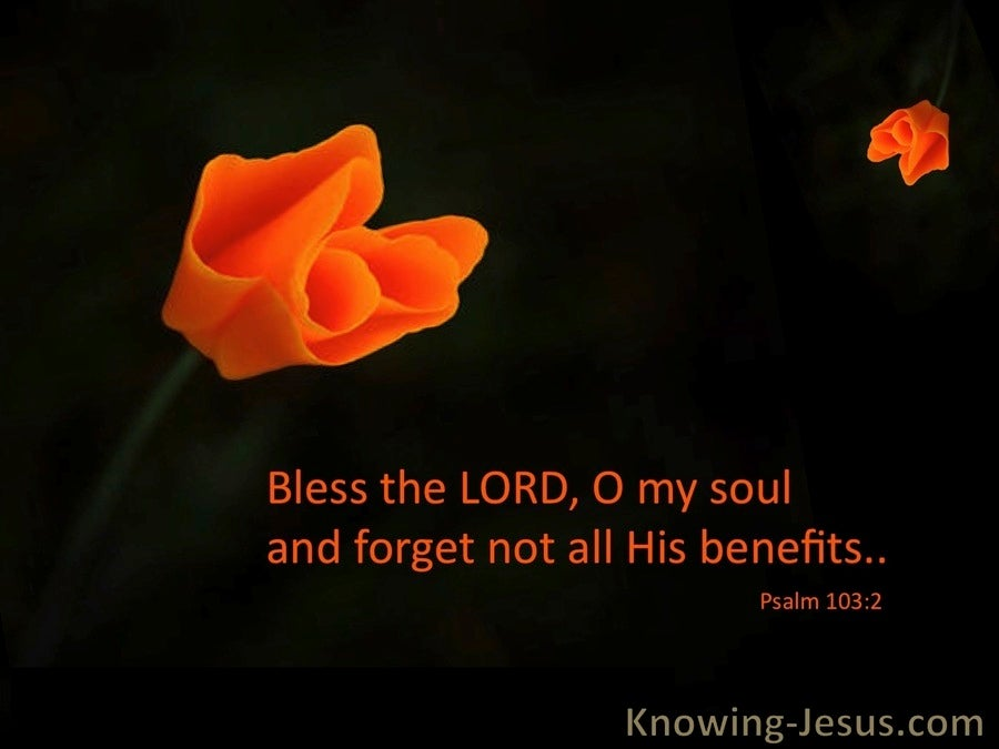 Psalm 103:2 Bless The Lord Oh My Soul