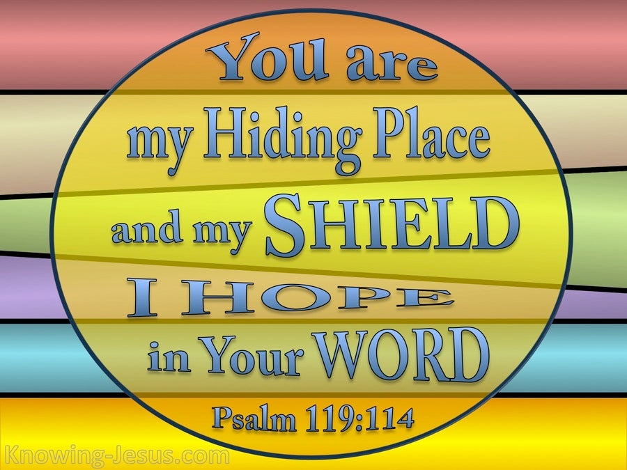 Psalm 119:114 Your Are My Hiding Place (yellow)