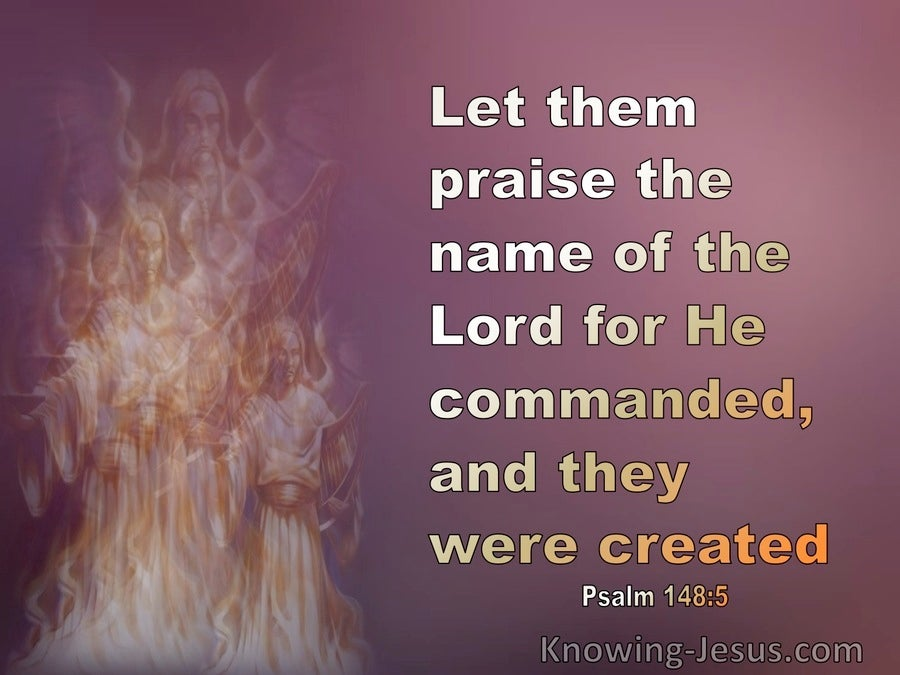 Psalm 148:5 Let Them Praise The Name Of The Lord (pink)