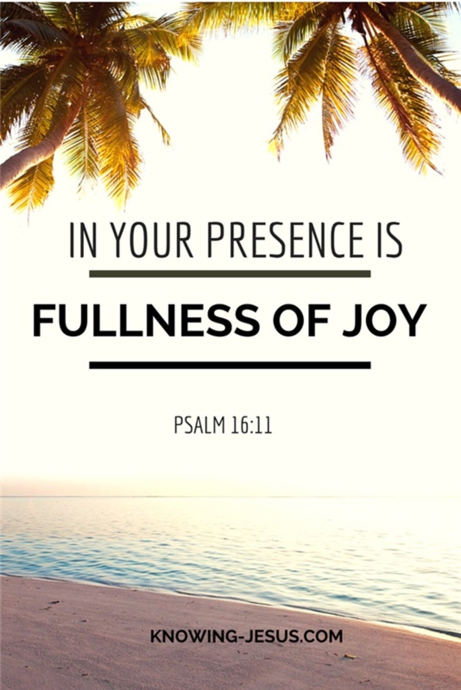 Psalm 16:11 In Your Presence Is Fullness Of Joy (white)