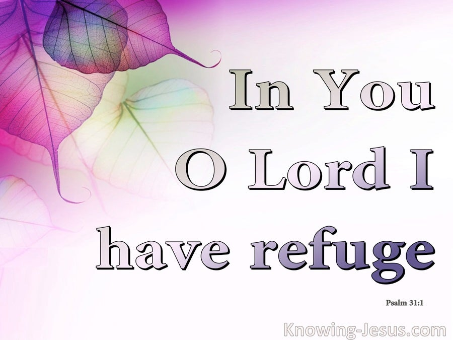 Psalm 31:1 In You I Have Refuge (purple)