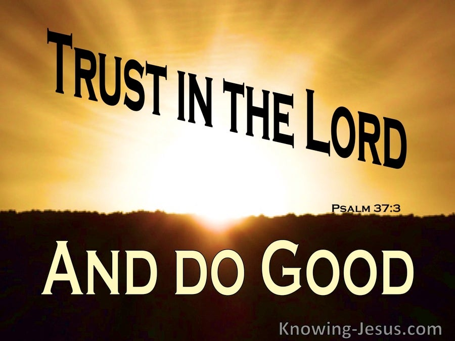 Psalm 37:3 Trust in the Lord  And Do Good (orange)