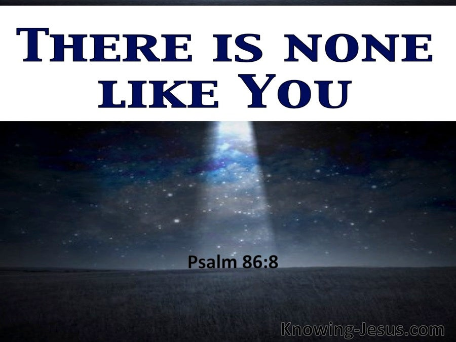 Psalm 86:8 There Is None Like You (white)
