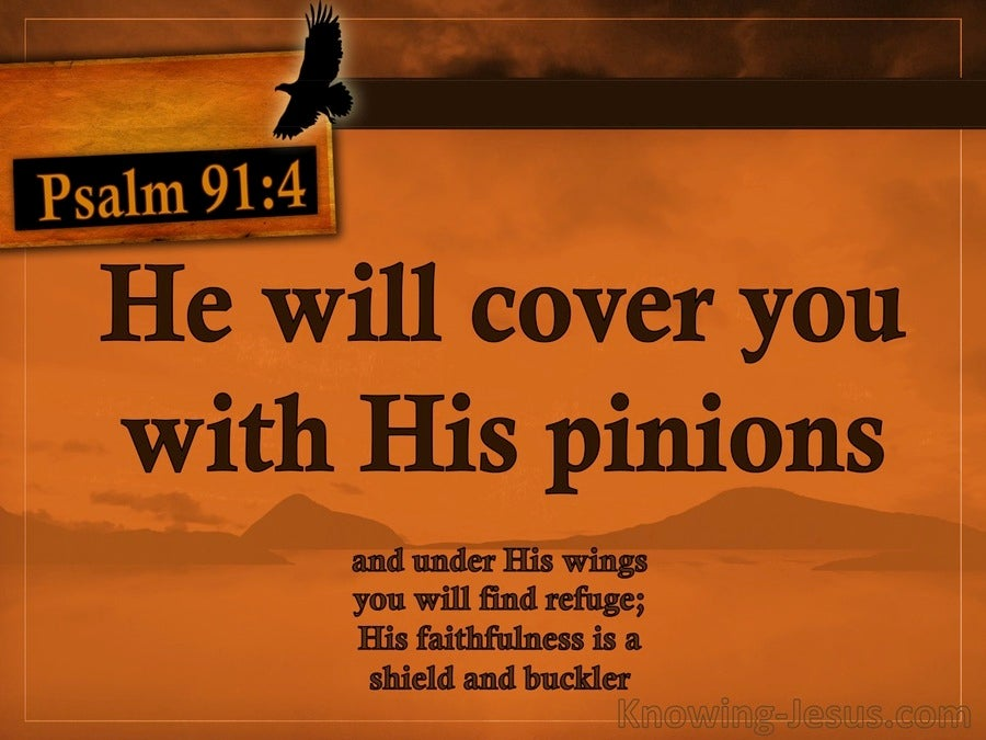 Psalm 91:4 He Will Cover You With His Pinions (orange)