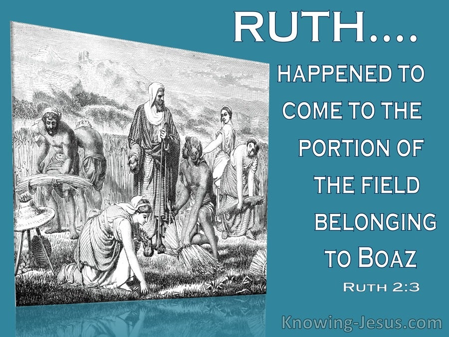 Ruth 2:3  Ruth Departed And Gleaned In The Field (white)