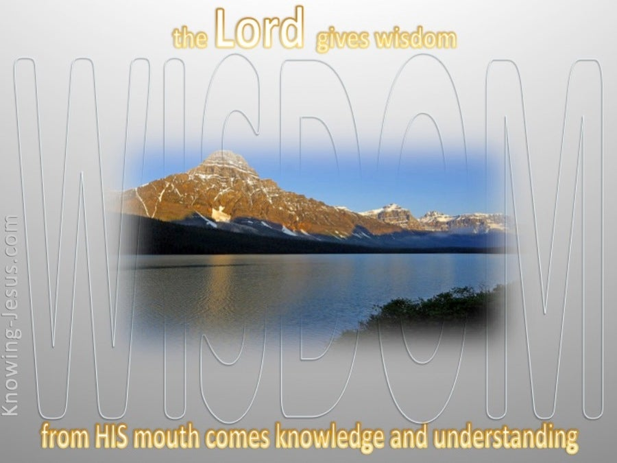 Proverbs 2:6 The Lord Gives Wisdom (gray)