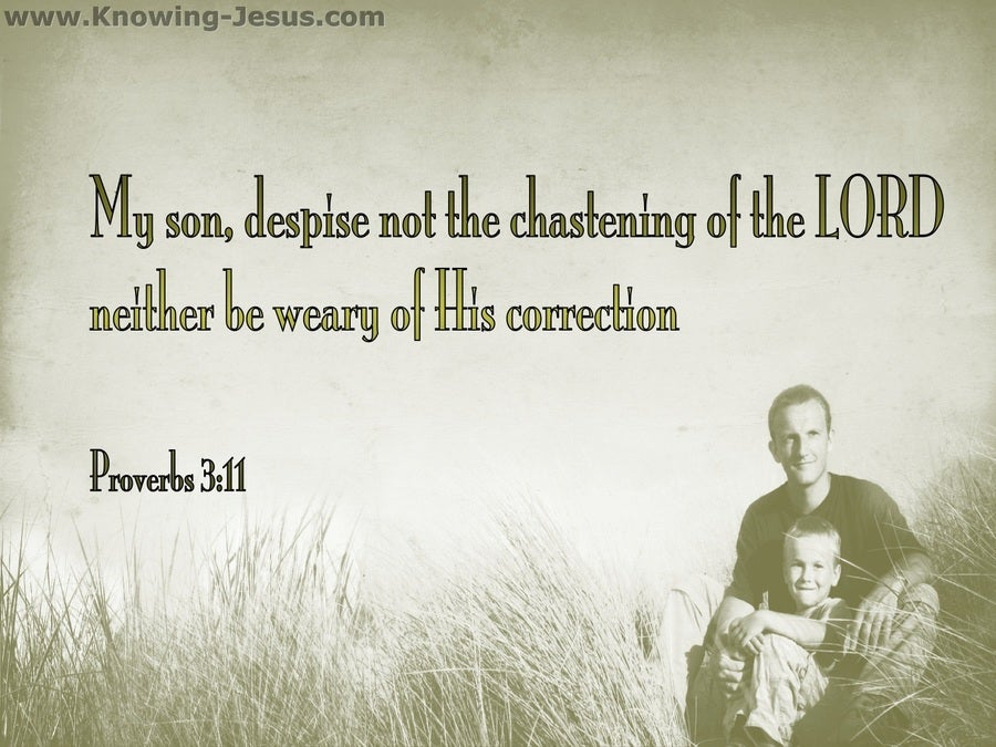 Proverbs 3:11 Do Not Despise The Lord's Correction (sage)