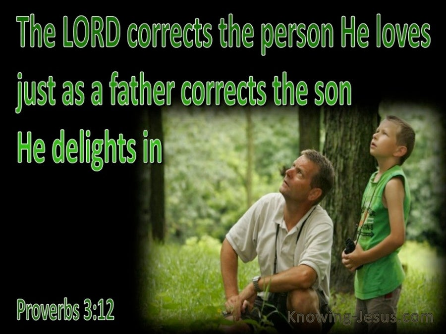 Proverbs 3:12 God Corrects Us (green)