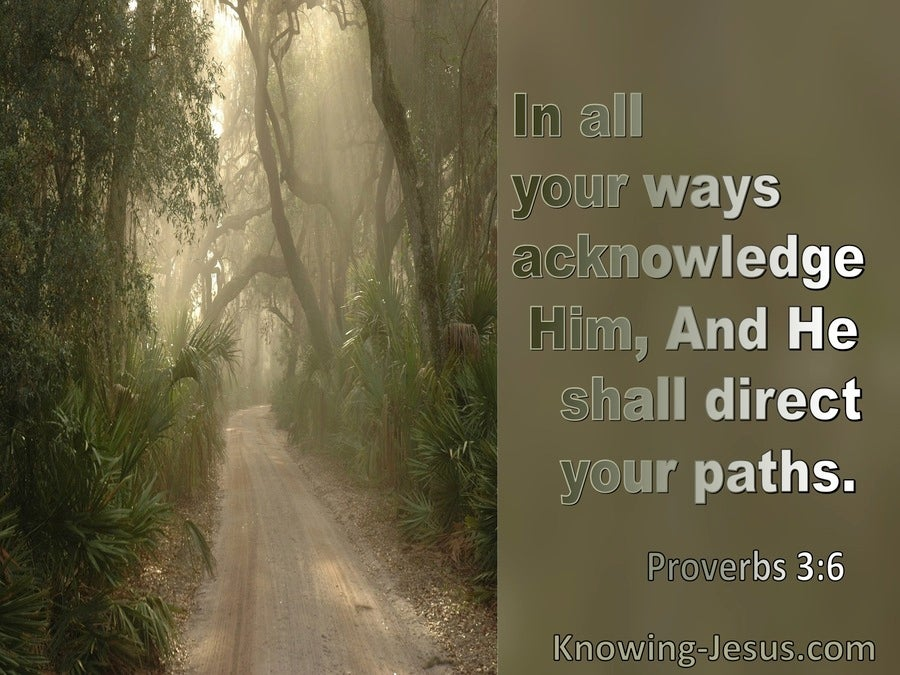 Proverbs 3:6 In All Your Ways Acknowledge Him And He Will Direct Your Path (sage)