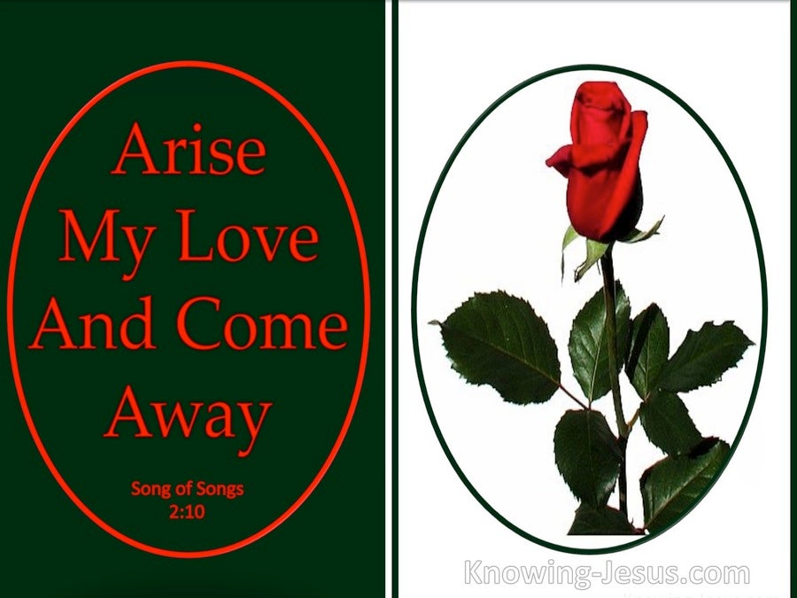 Song of Solomon 2-10 Arise My Love And Come Away (red)
