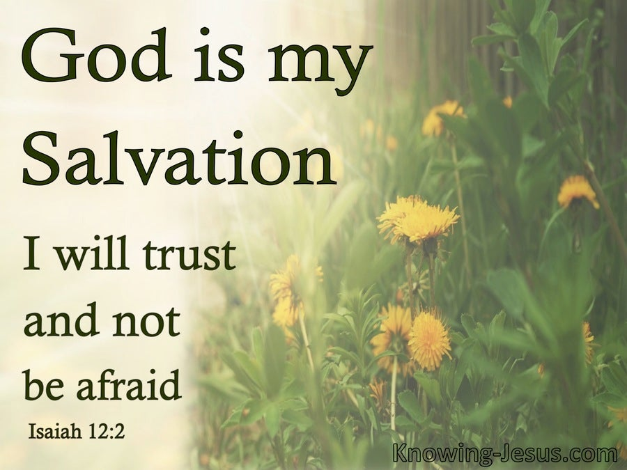 Isaiah 12:2 God Is My Salvation I Will Not Be Afraid (green)