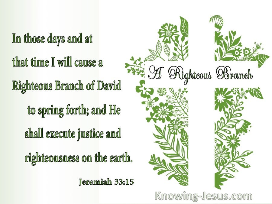 Jeremiah 33:15 A Righteous Branch of David (green)