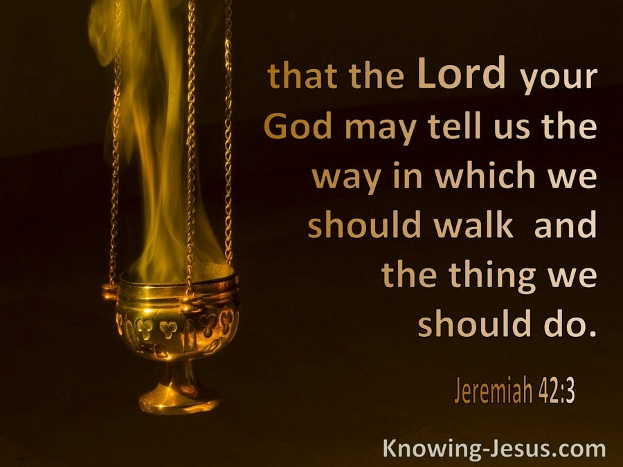 Jeremiah 42:3 That The Lord May Tell Us The Way In Which We Should Walk (brown)