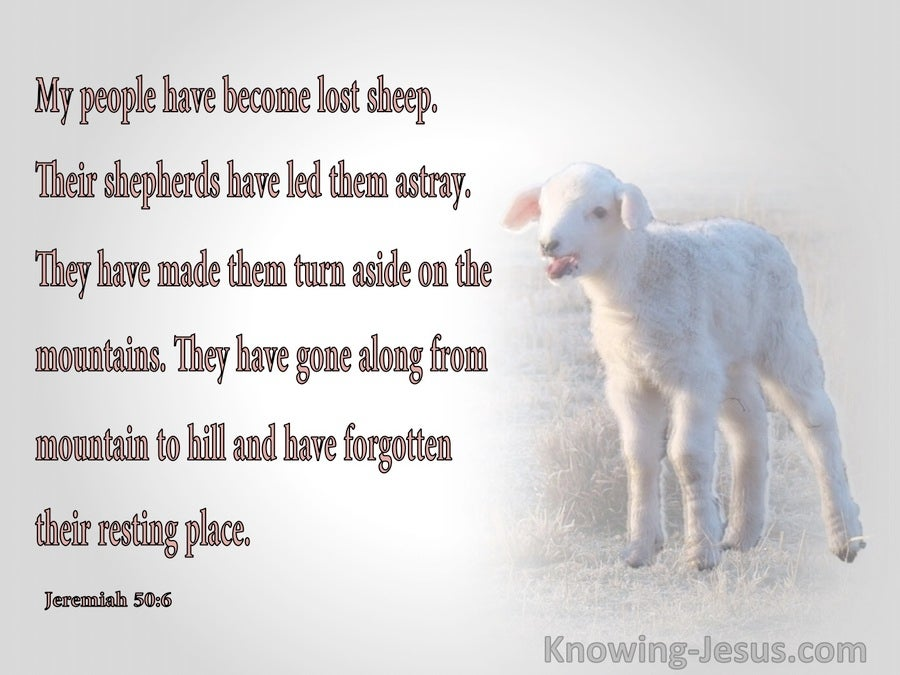 Jeremiah 50:6 My People Have Become Lost Sheep (gray)