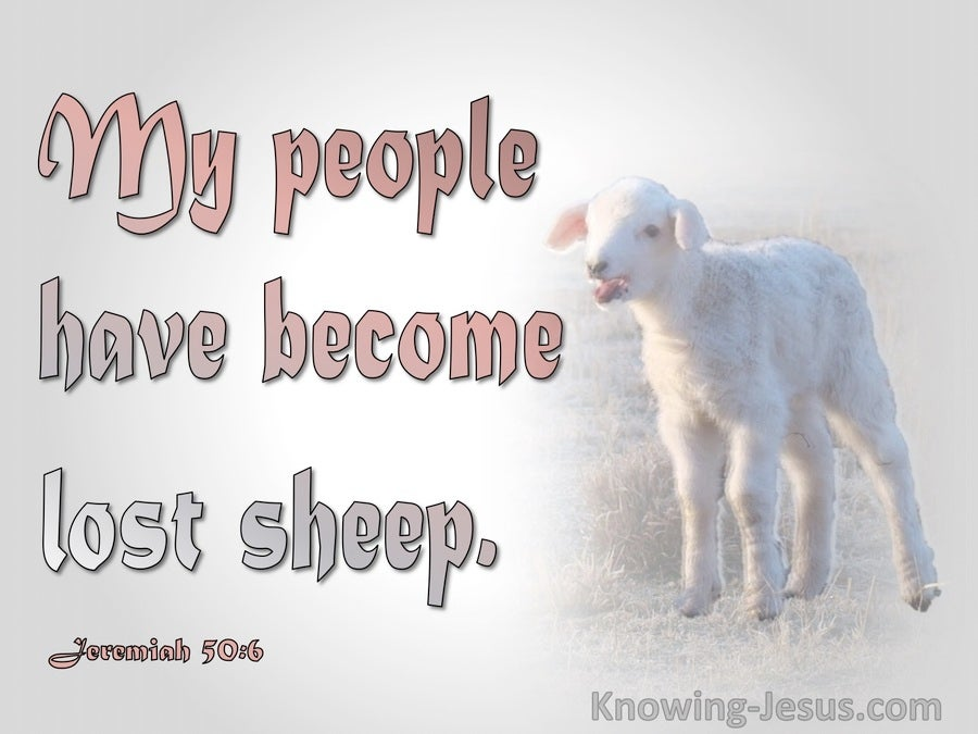 Jeremiah 50:6 My People Have Become Lost Sheep (pink)
