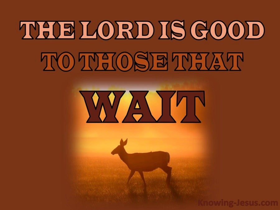 Lamentations 3:25 The Lord Is Good To Those Who Wait (orange)