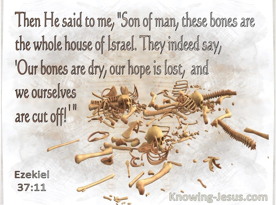Ezekiel 37:11 Son Of Man These Bones Are The Whole House Of Israel (gray)