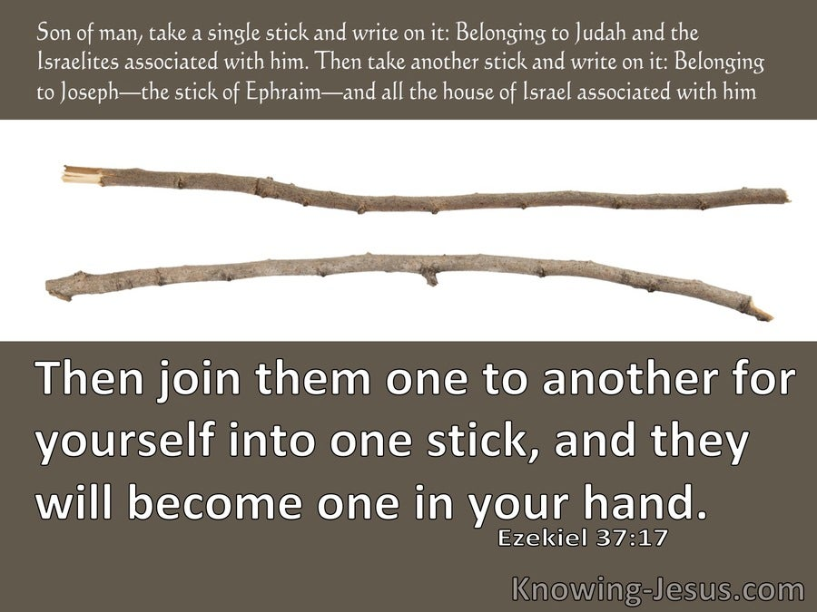 Ezekiel 37:17 Then Join Them For Yourself One To Another Into One Stick (brown)
