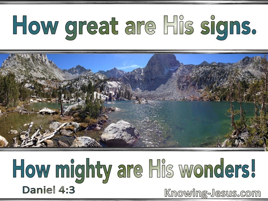 Daniel 4:3 How Great Are His Signs (white)