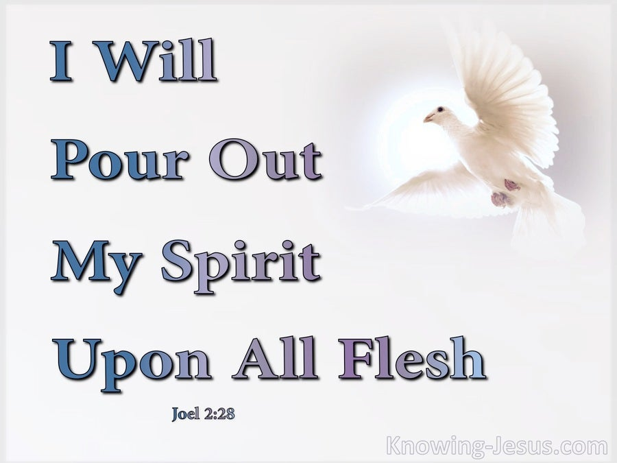 Joel 2:28 I Will Pour Our My Spirit Upon All Flesh (white)
