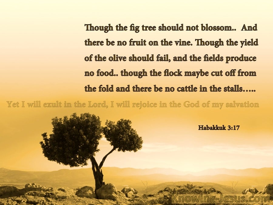 Habakkuk 3:17 Though The Fig tree Should Not Blossom (brown)