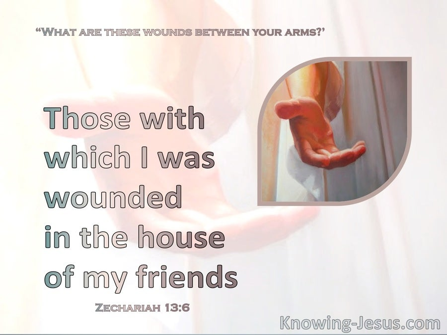 Zechariah 13:6 Whose With Which I Was Wounded In The House Of My Friends (pink)
