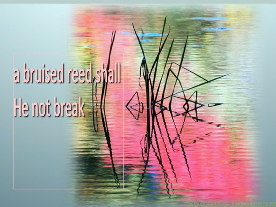 Matthew 12:20 A Bruised Reed He Will Not Break (aqua)
