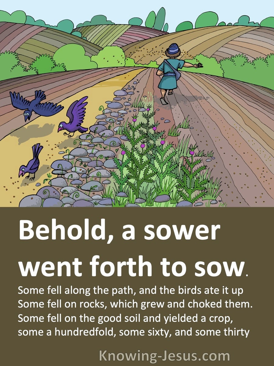 Matthew 13;4 to 8 A Sower Went Forth To Sow (brown)
