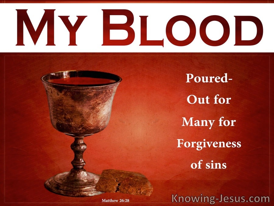 Matthew 26:28 My Blood Of The New Covenant For Forgivensss Of Sins (red)