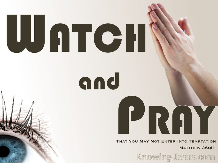 Image result for watch and pray book
