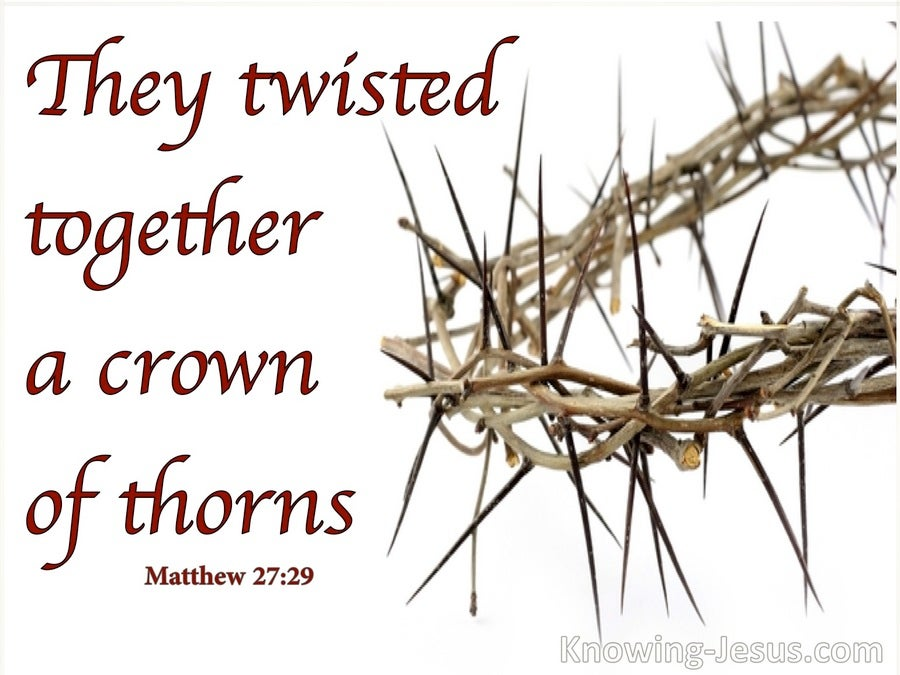 Matthew 27:29 They Twisted Together A Crown Of Thorns (white)