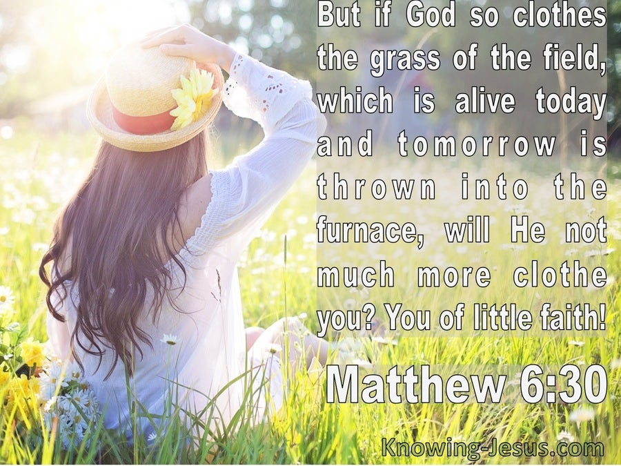 Matthew 6:30 If God So Clothe The Grass Of The Field (white)