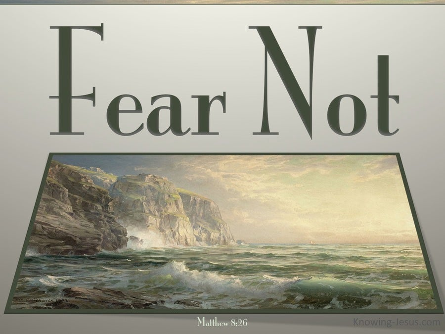 Matthew 8:26 Fear Not (sage)
