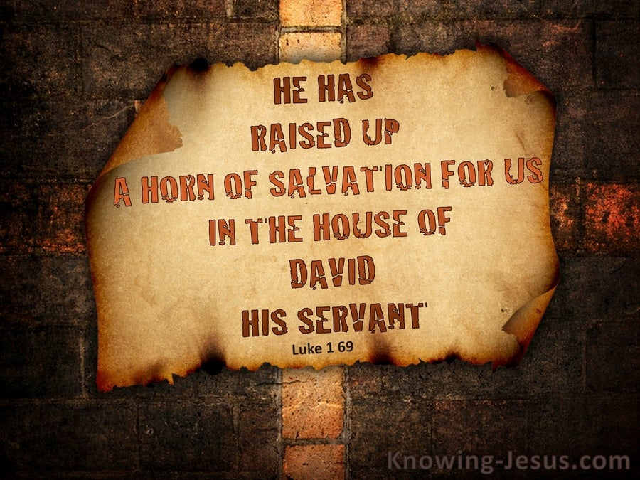 Luke 1:69 He Raised Up A Horn of Salvation (brown)