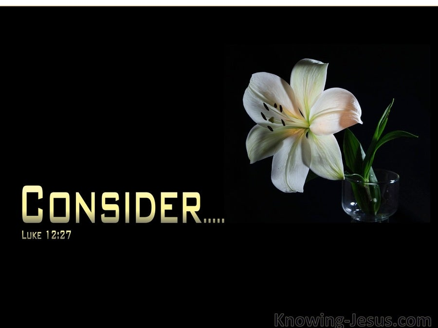 consider the lilies Jesus makes us fully human, and he commands us to consider the lilies the arts are vessels to carry the gospel to fully capture our humanity, brimming with life.
