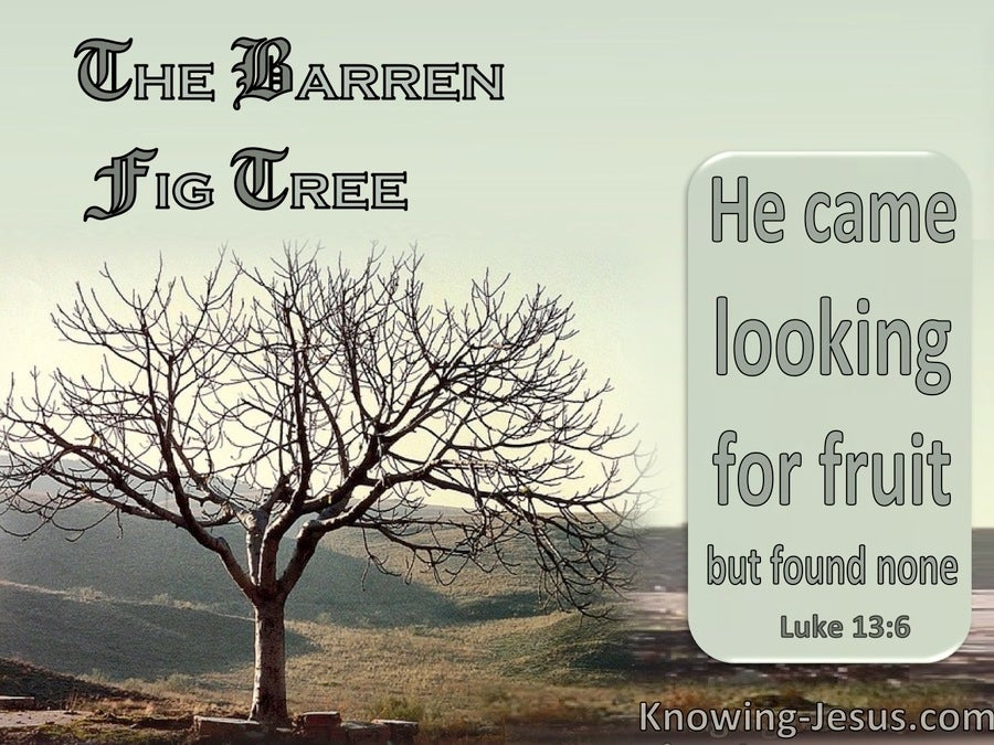 Luke 13:6 The Barren Fig Tree : He Found No Fruit (sage)