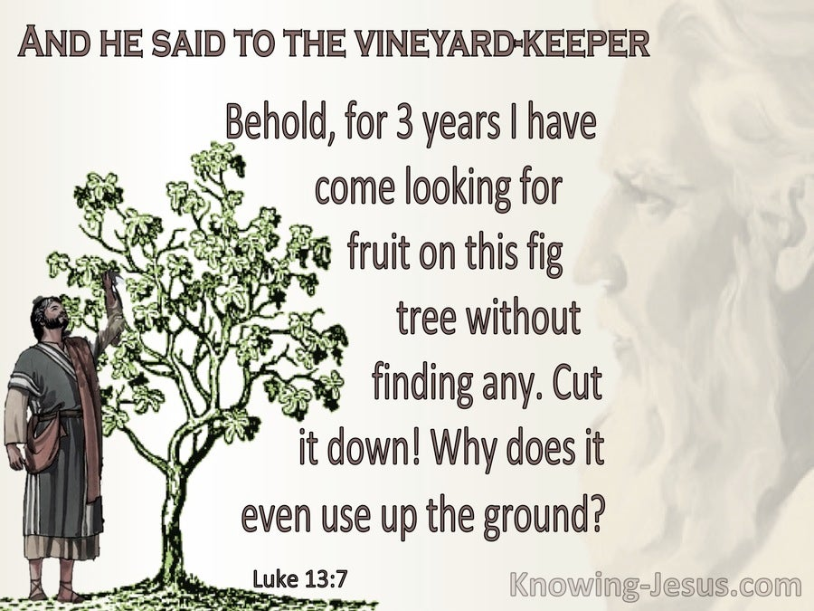 Luke 13:7 Parable Of The The Barren Fig Tree (beige)