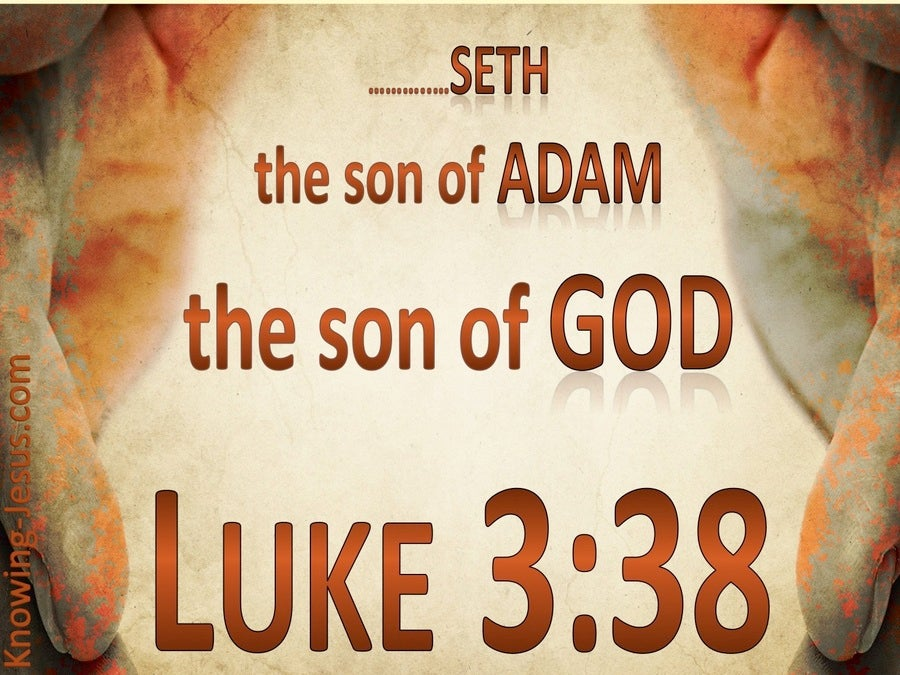 Luke 3:38 Son of Adam Son of God (brown)