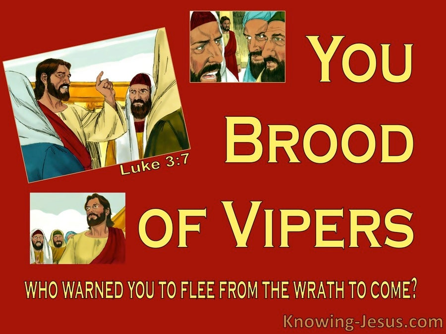Luke 3:7 You Brood Of Vipers (red)
