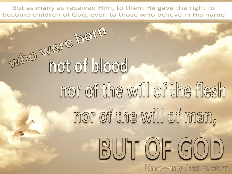 John 1:13 Not Born of Man's Will But Of God (beige)