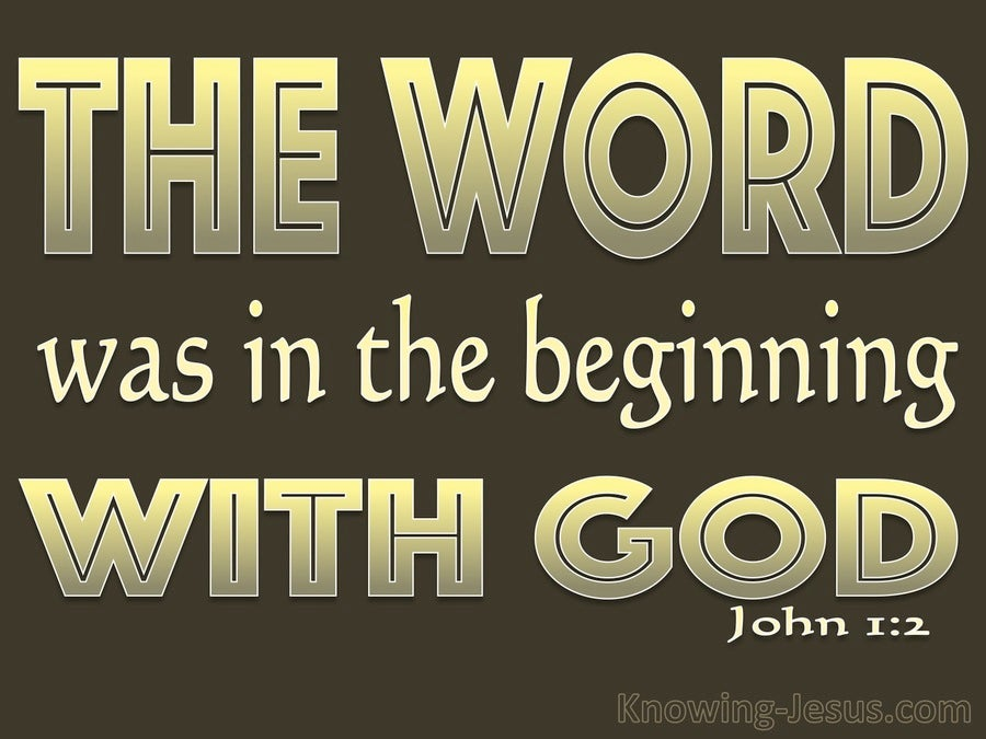 John 1:2 He Was In The Beginning With God (brown)