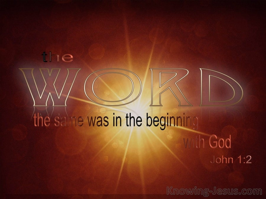John 1:2 He Was In The Beginning With God (red)