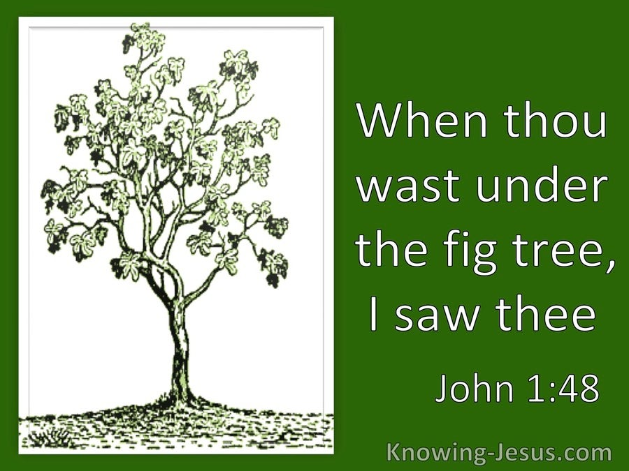 John 1:48 When Thou Wast Under The Fig Tree I Saw Thee (utmost)09:10
